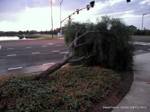 Storm Spotter Damage