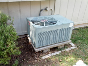 Our AC unit gave us a scare this afternoon. It cut out, we called a guy, he rinsed the coils and reset it. Fixed!